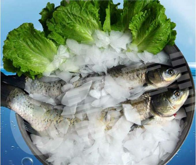 salt ice flakes china price.jpg