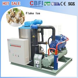 China CBFI BF1000 - BF60000 Commercial Ice Block Making Machine For Cooling Vegetable Fruit factory