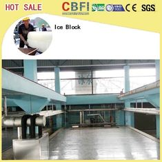 China 5 Kg 10 Kg 20 Kg 50 Kg Ice Cans Ice Block Making Machine Energy Saving factory