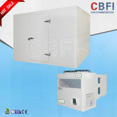 China Frozen Foods Seafood Blast Freezing Process / Meat Blast Freezer Easy Operation factory