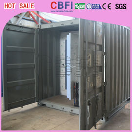 China Swing Door / Sliding Door Container Cold Room Germany Bitzer / American Copeland factory