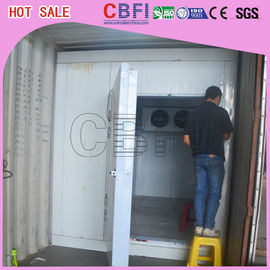 China Chicken Fruit Frozen Container Cold Room With Italy Brand Castal factory