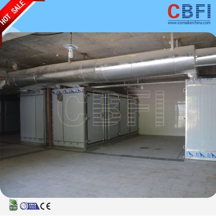 Commercial Blast Freezer / Chemical Blast Freezer Room With Imported Compressor supplier