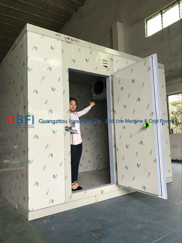 CE 2 Ton 4 Hrs Commercial Blast Freezer Unit For Chicken Processing Room supplier