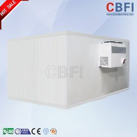 China Stainless Steel Freezer Cold Room / Walk In Freezer For Food Storage distributor