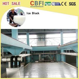 5 Kg 10 Kg 20 Kg 50 Kg Ice Cans Ice Block Making Machine Energy Saving